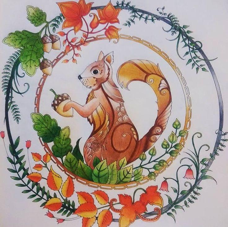 Inspirationalcoloringpages Coloringbooks Livrosdecolorir Jardimsecreto Secretgarden Florestaencantada Enchantedforest Pginasparacolorir