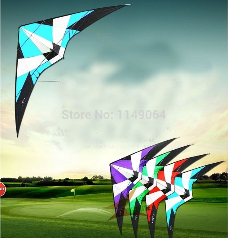 (105.16$)  Buy here  - free shipping high quality large 2.7m storm dual line stunt kite with handle line outdoor toys albatross kites flying hcxkite
