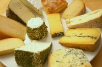 troubleshooting cheese making