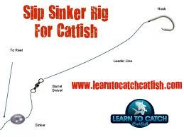 The carolina rig is a great beginner setup for catching a for Trout fishing rigs setup