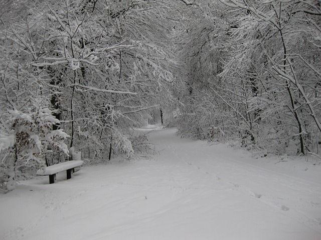 Photo gratuite: Hiver, La Neige, Hivernal, Wintry - Image gratuite sur Pixabay - 988191