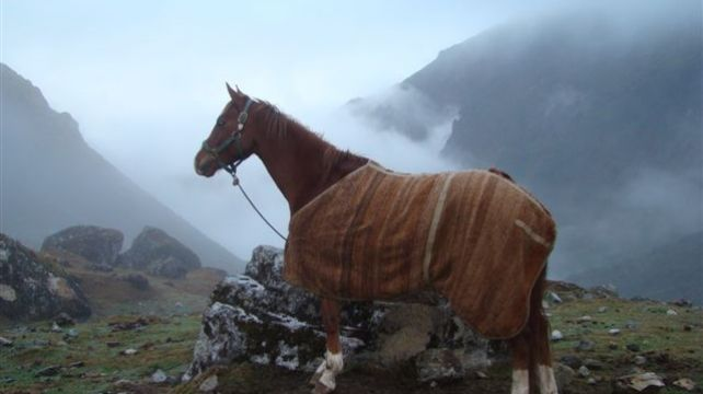 Horse Riding in the Lost City of the Incas   Horse Riding Travel Expedition, Discover Machu Picchu, Peru on your horse   Combadi