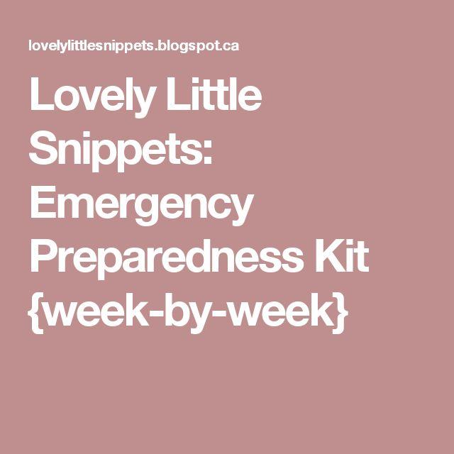 Lovely Little Snippets: Emergency Preparedness Kit {week-by-week}