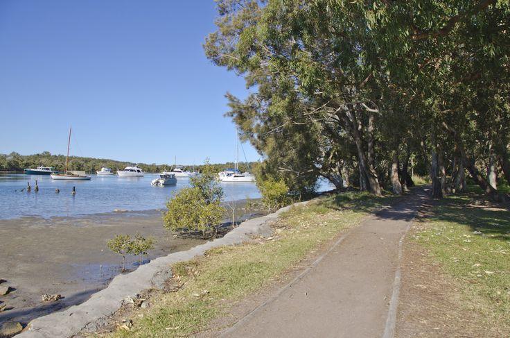 Lemon Tree Passage: Leading up to the boardwalk - a good place for Koala spotting! #portstephens #lemontreepassage