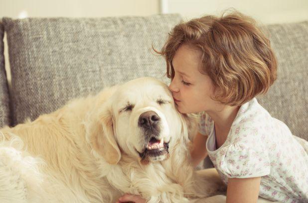 MONTRÉAL — Les enfants sont moins stressés en présence de leur chien, selon une étude menée par des chercheurs de l'Université de la Floride. Les scientifiques ont invité une centaine de familles qui possèdent un chien à participer à leur expérience.