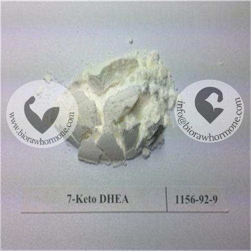 Keywords:7-DHEA keto,7-DHEA keto hair loss treatment,7-DHEA  powder buy online,7-DHEA weight loss,7 keto dhea bodybuilding benefit,7 keto dhea chemist warehouse,7-DHEA enhance metabolism,7 keto dhea effect,7-DHEA powder for low testosterone,7 keto dhea for anrenal fatigue