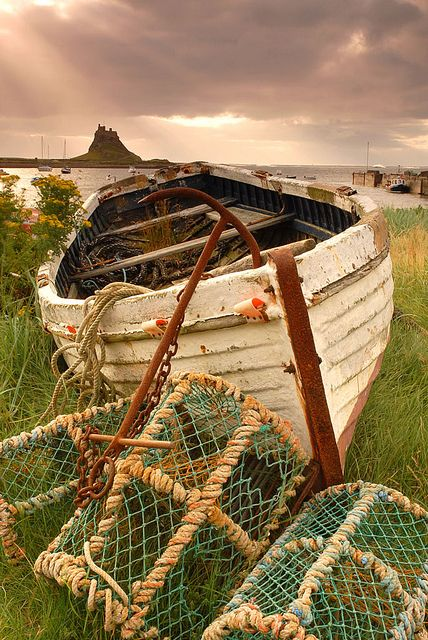Lindisfarne Castle in the distance, Northumberland, England.  [by tonyreed69] :: [Peaceful Eye]