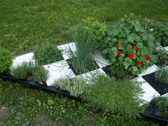 Best 25 small herb gardens ideas on pinterest indoor for Checkerboard garden designs