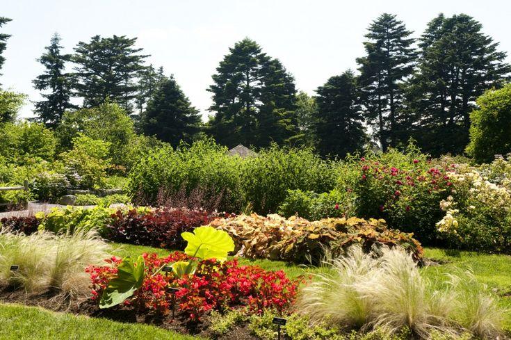 Morning Eye Candy: Garden to Table: Colors Gardens, Pretty Gardens, Gorgeous Gardens, Gardens Automation, Plants Talk, Photo, Gardens Center, Home Gardens, Botanical Gardens