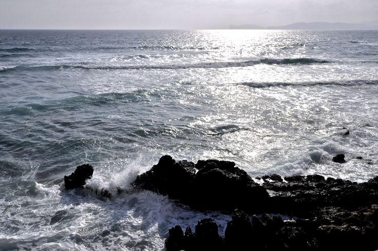 #alghero #italy #italia #italien #tourist #sightseeing #wow#wowplaces #beautiful #sea #mare #island #sun #sunshine #blog #blogger #sardinia #sardinien #holiday #vacation #urlaub #reise