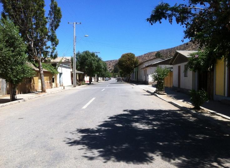 Mincha Norte. Foto de Germán Muñoz C.