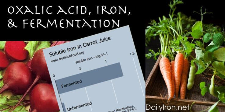 Fermentation, Oxalic Acid, and Mineral Absorption