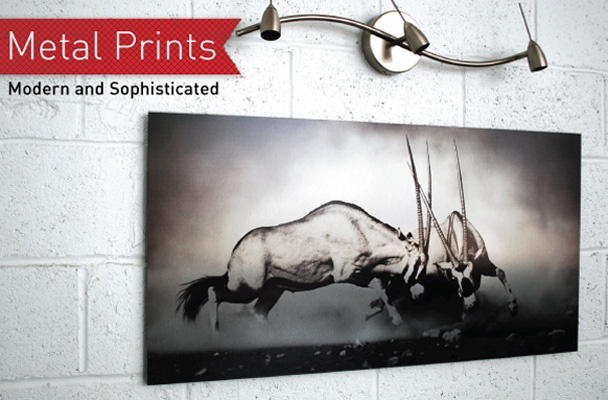 If you are really looking to turn heads with your photographs, then Metal Prints are definitely for you. With vivid colours and the flash of bare metal, you are certain to get the modern, bold effect that you desire.
