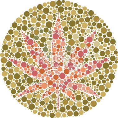 Ishihara color test plate