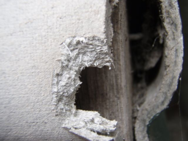10 Important Facts About Mesothelioma and Asbestos