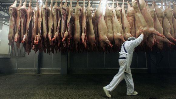 In einer Idylle in Niedersachsen wird im Sekundentakt geschlachtet, immer schneller, immer billiger, immer schmutziger. Am Ende leidet die Gesundheit aller darunter.