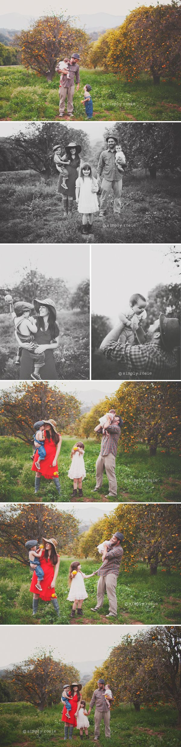 Orange Orchard session by Simply Rosie...simply devine!