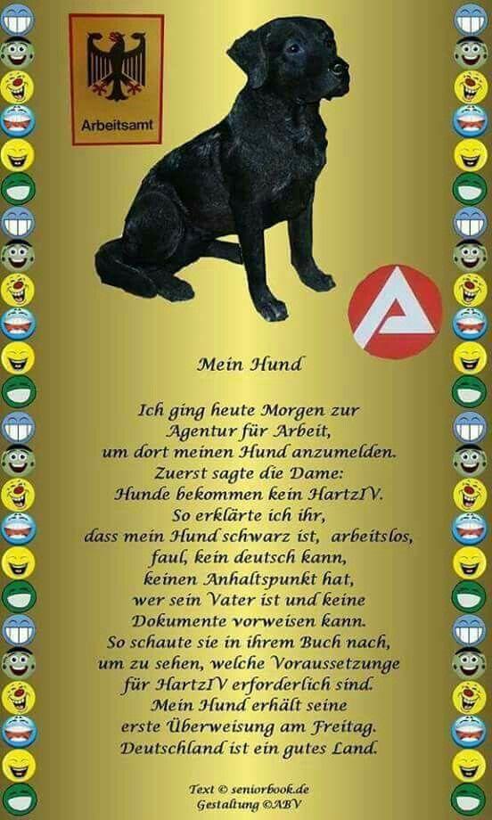 Hund Hartz 4