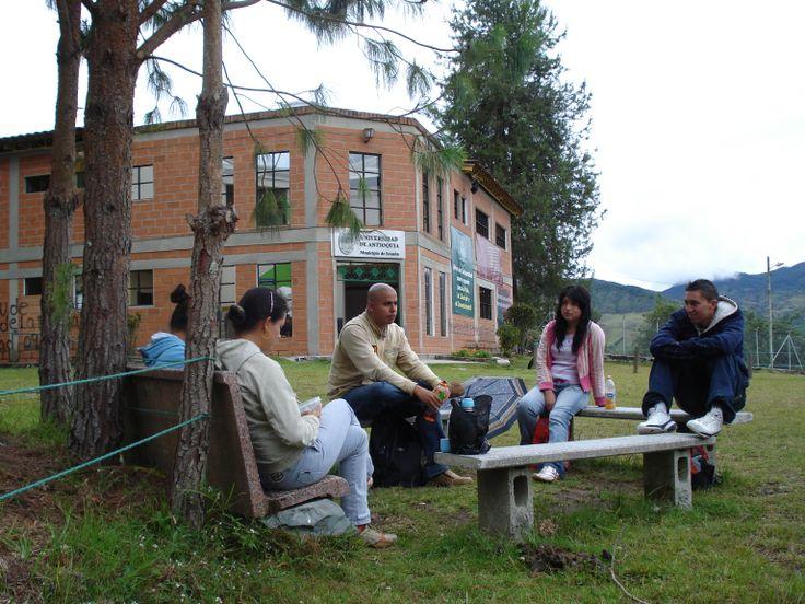 Sede Sonsón.  La sede Sonsón de la Universidad de Antioquia, representa para nosotros los sonsoneños la oportunidad de desarrollo del municipio y de la región