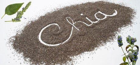 Σπόροι chia – Ιδιότητες και χρήσεις …Τι είναι οι Σπόροι chia?