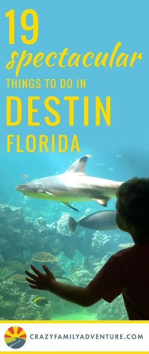 Things to do in Destin Florida on your next family beach vacation! There are so many great restaurants and activities that you and your kids will love! Plus some really cool hotels and resorts. Plan your trip now!