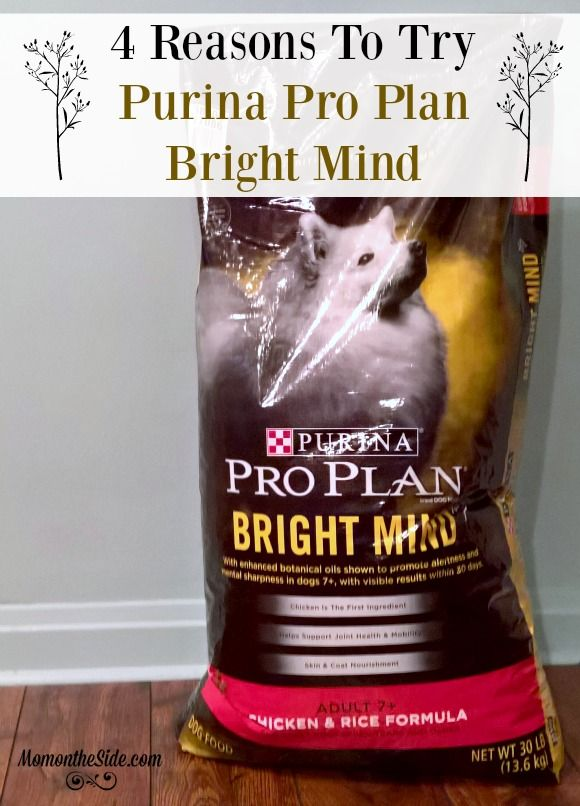 We're loving theimprovementswe've seen in our dog with Bright Mind. 4 Reasons to tryPurina Pro Plan Bright Mind if you are thinking of switching. #BrightMind ad