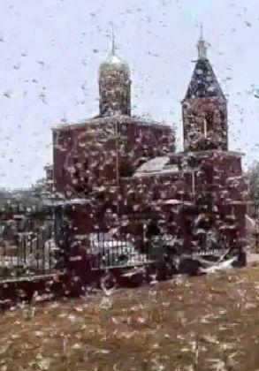 """""""Nadciągnęły jak chmury"""". Inwazja szarańczy na rosyjski region. http://tvnmeteo.tvn24.pl/informacje-pogoda/swiat,27/nadciagnely-jak-chmury-inwazja-szaranczy-na-rosyjski-region,174912,1,0.html"""