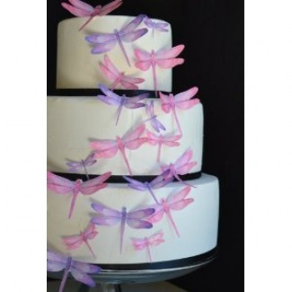 Edible Dragonfly Cake Decorations