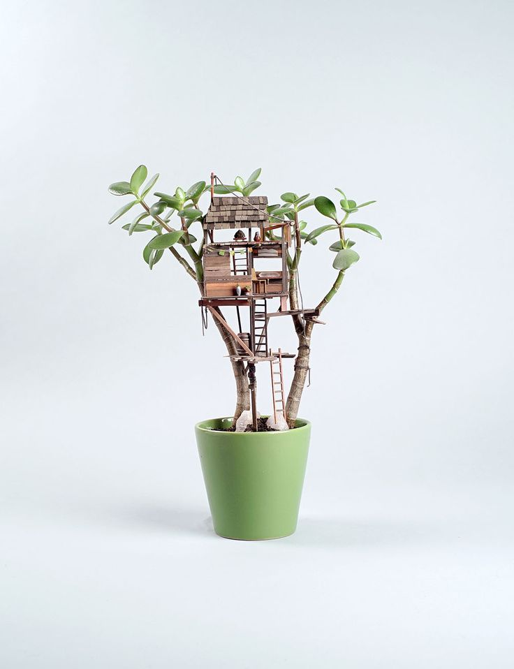 Elegant miniature treehouse sculptures wrapped around houseplants