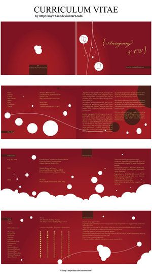 30 best Creative Resume images on Pinterest Creative curriculum - ses resume