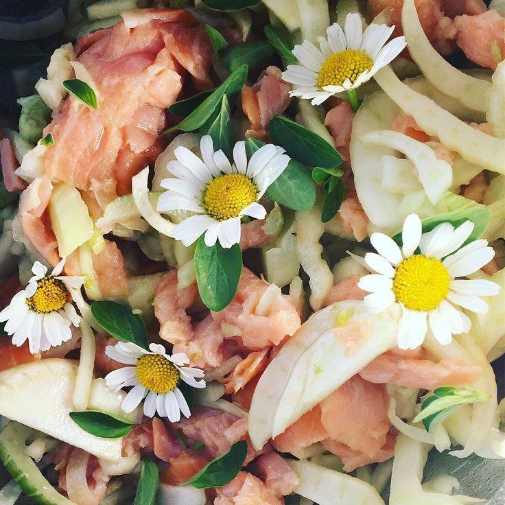 Fenchel-Rauchlachssalat. Unumstritten unser Lieber Sommersalat. So einfach geht das: - 2 Fenchel in zarte Streifen schneiden - Rachlachs (Wildfang) in Streifen schneiden - Für das Dressing weisser Balsamico und Olivenöl (beides von labottegadelgusto.ch) mit etwas Honig mixen. Salzen und je nach Geschmack mit rosa Peffer würzen - Fenchel und Lachs mit dem Dressing gut mischen und 1h ziehen lassen - fürs Auge aktuell mit frisch gepflücktem Wiesensalbei und/oder frischem Oregano  oder…