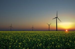 Green Energy Commodities / Introducing Renewable Energy Certificates to the UK