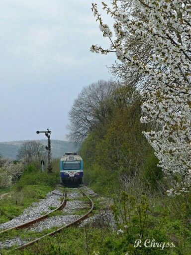OSE train passind by Agras, a village near Edessa Macedonia, Greece