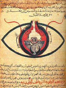 Science in the medieval Islamic times, also known as Islamic science, was practiced during the Islamic Golden Age. Greek knowledge was translated into Arabic, these translations provided many scientific advances made by Islamic scientists during the Middle Ages. vsaunders