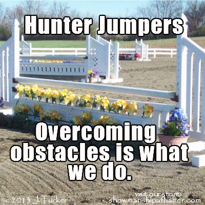 IF, your horse isn't afraid of brightly colored jumps and flower pots........