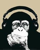 Monkey with Headphones, Steez Poster: 91.5cm x 61cm - Buy Online