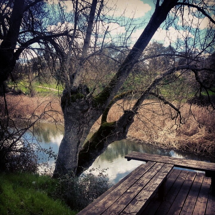 Otra vista del rio manzanares