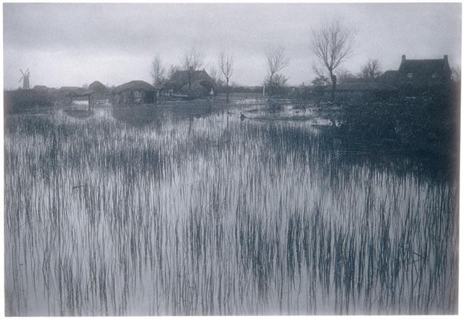 Peter Henry Emerson: A Rushy Shore, 1887-88. Platinum print. The Metropolitan Museum of Art