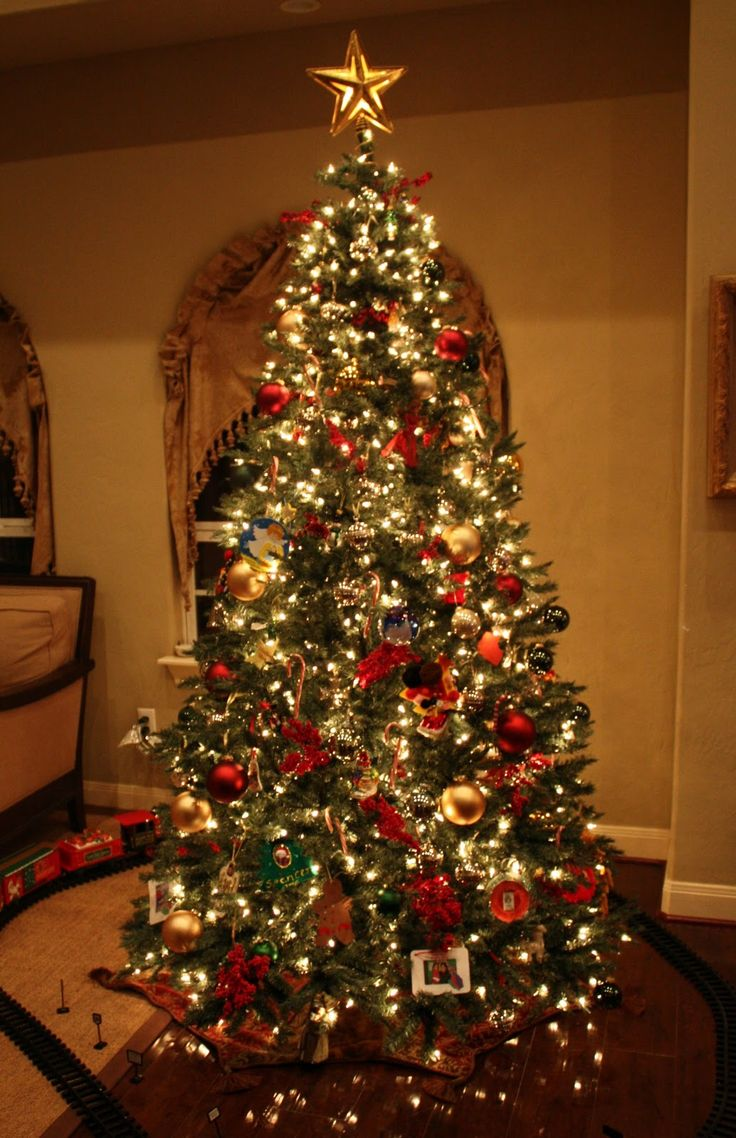 Best 25 Christmas Tree Costume Ideas On Pinterest