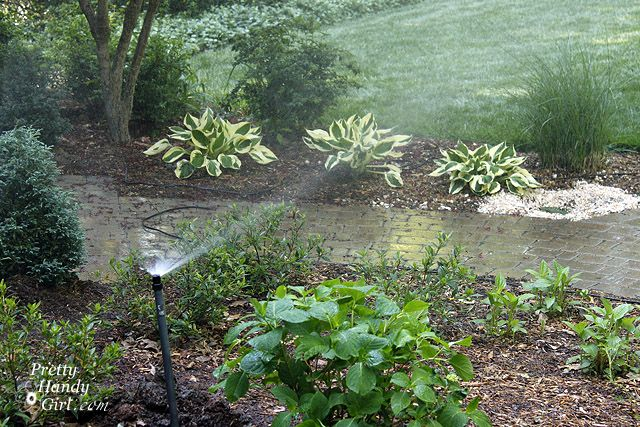 Last week I shared with youhow to grow a better lawnbased on what I learned frommy education at Pennington Seed. Part of growing a more beautiful lawn is learning how to water it properly. Did you know that the majority of homeowners overwater their lawn and plants? Typically your yard only needs 1 inch of …