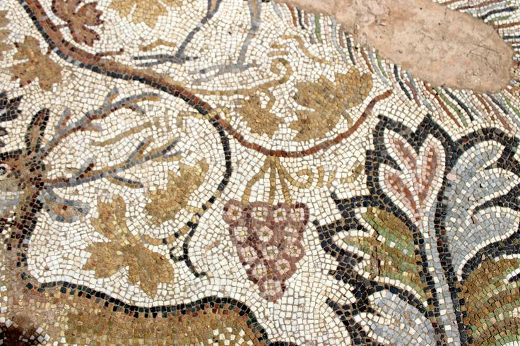 Grapes and leaves, Heraclea Lyncestis. Macedonia/Fyrom. 4th-6th century AD. Photo: Helen Miles Mosaics