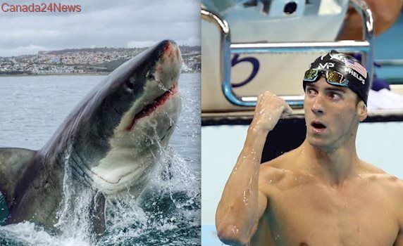 Michael Phelps loses races to simulated great white shark