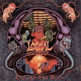 Expand the Hive [CD]