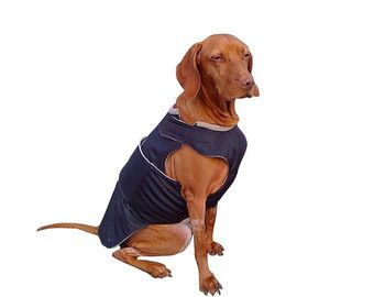 Vizsla / puntero invierno perro capa - chaqueta de perro caliente - Custom perro impermeable - impermeable / paño grueso y suave capa - hecho a pedido