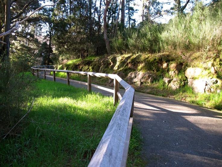 Nature walks in Hepburn Springs