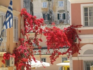 The island of Corfu!!! Beloved destination!!!
