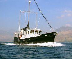 Seahorse Marine Diesel Duck