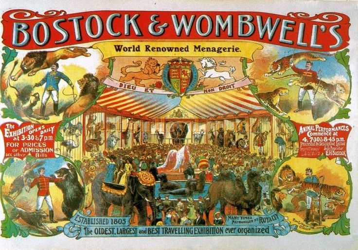 A Poster for the Bostock & Wombwell Menagerie, Glasgow, around 1900 - Courtesy Robert Poole.