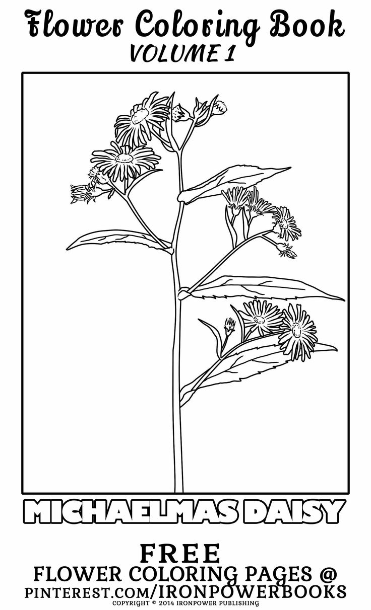 free commercial use coloring pages - photo#30
