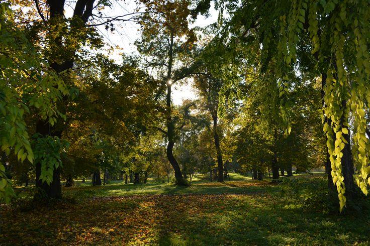 Gödöllői Királyi Kastély. Park.